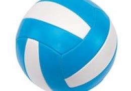 Beachvolleybal IN0605007